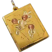 Vintage gold filled book locket with multi color flower bouquet urn j223