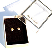 Hallmarked 14K Yellow Gold Shell Earrings