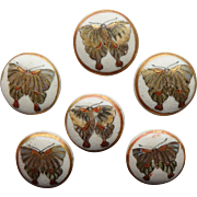 Butterfly Satsuma Pottery Antique Buttons set of 6 Japan