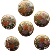 Satsuma Pottery Antique Orange and Purple Flowers set of 6 Buttons  Japan