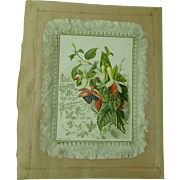 Antique Raphael Tuck Christmas Card with Silk Frame