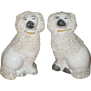 Pair of Small Staffordshire Poodle Figurines with Textured Coats - 3 3/8""