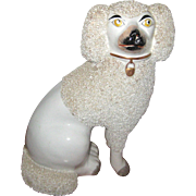 "9"" White Staffordshire Poodle with Separate Front Feet - Circa 1870"