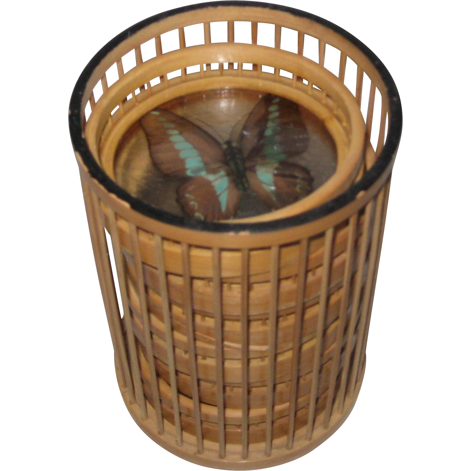 Bamboo and Real Butterflies Set of Six Coasters and Holder
