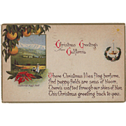 Vintage Postcard - Christmas in California - 1920