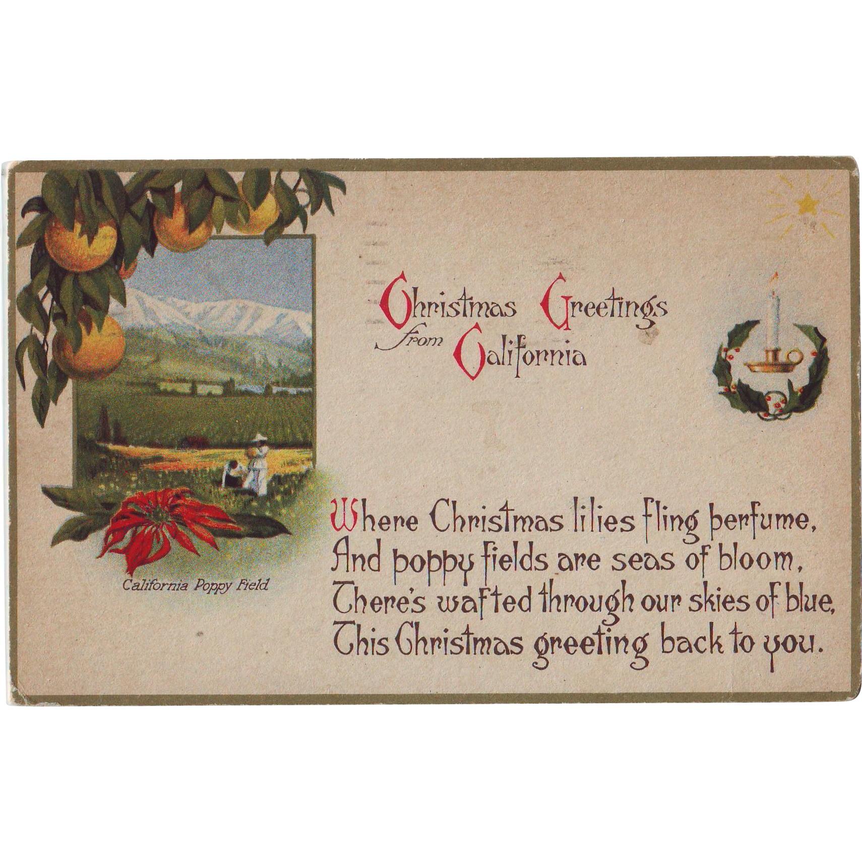 Vintage Postcard - Christmas in California - 1920