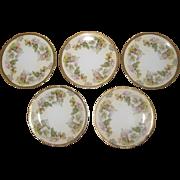 "Set of Five Royal Rudolstadt Prussian Porcelain 6"" Dessert Plates with Hellebore or Christmas Rose Pattern"