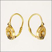 French Dainty 18K Two Tone Gold Lever Back Earrings - Pierced Ears