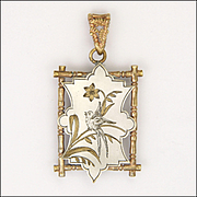 Victorian Aesthetic Period Bird Locket on Silvered and Gilt Metal