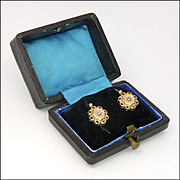 French Antique Gold Filled Lever Back Boxed Earrings - ORIA