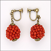 Antique 835 Silver Gilt and Genuine Coral Drop Screw Back Earrings