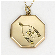 Edwardian 9K Gold & Silver 'Good Luck' Locket & Chain