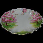 Royal Albert Blossom Scalloped Serving Dish
