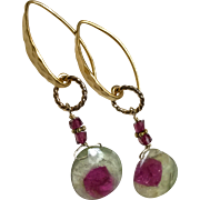 Watermelon Tourmaline Slice Golden Earrings