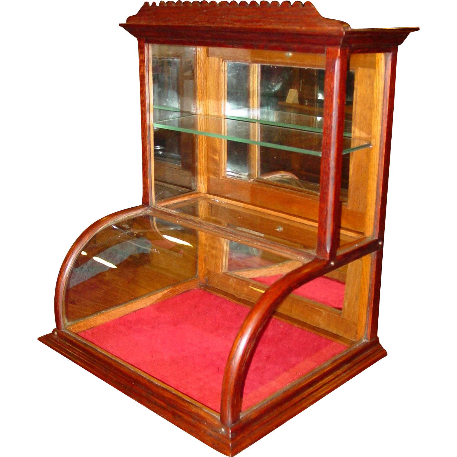 Neat small oak curved glass counter display case
