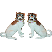 Fine pair antique Dresden porcelain pug dogs---signed