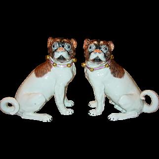 Fine pair antique Dresden porcelain pug dogs---signed
