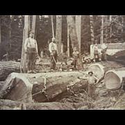 Original Vintage B&W Photograph by McCrea Ford Co. Astoria, Oregon Ilwaco, Washington - Loggers