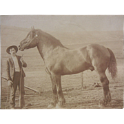 Vintage Original B&W Photograph of Man w/ Horse
