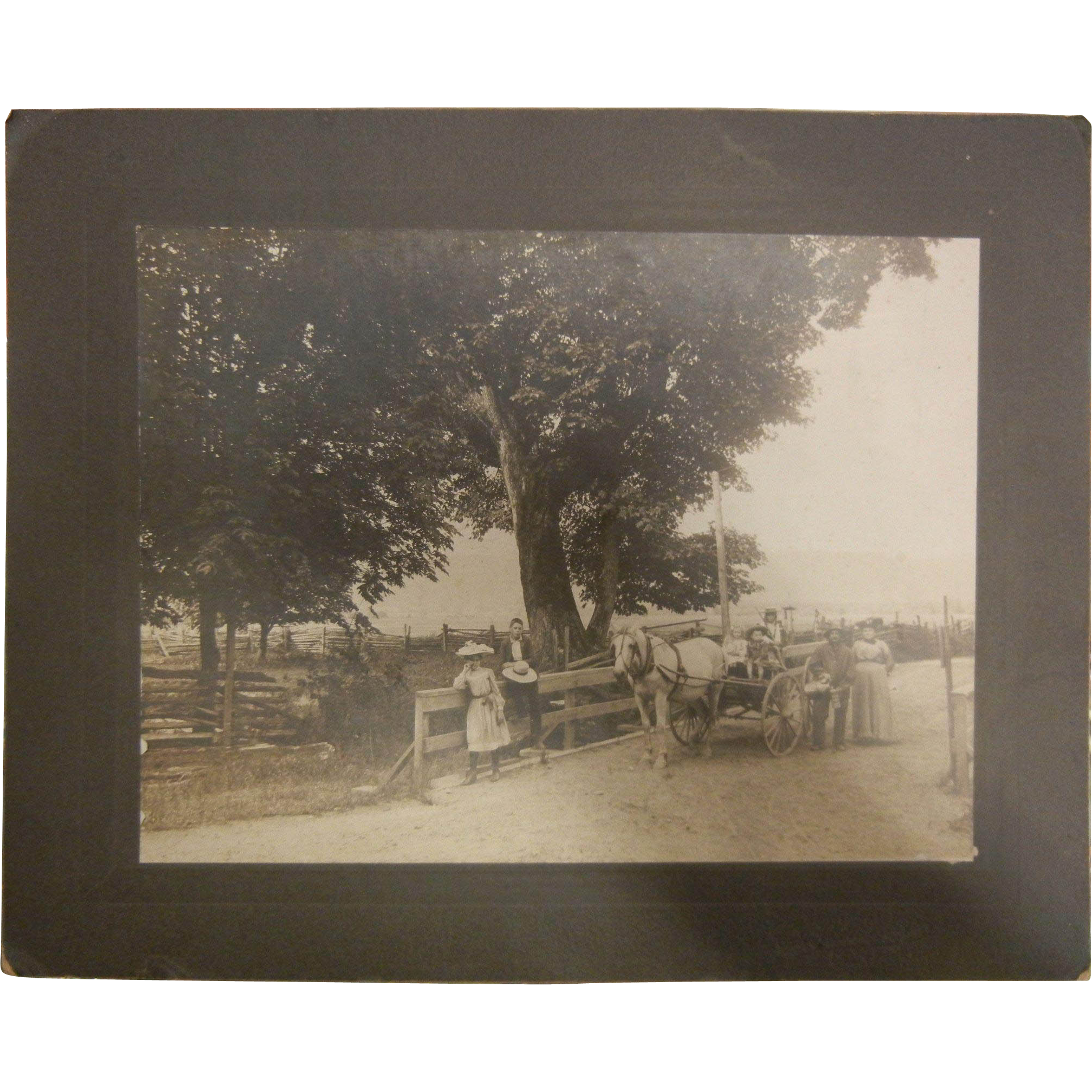 Vintage Original B&W Photograph of Family Horse & Buggy