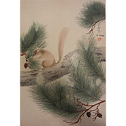 Vintage 1951 Print by KYOTO-HANGA - Squirrel, Pinecones