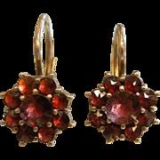 Fine Gilded Silver Hook Earrings w/ Bohemian Garnets