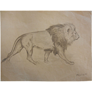Pencil Sketch Drawing Lion Signed Ed. Quigley