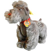 Vintage Steiff Snobby the Poodle Dog Stuffed Animal
