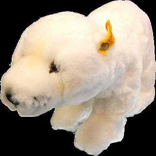 Vintage Steiff Polar Bear - Cosy Issy 5405/30