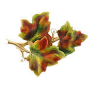 Antique Art Nouveau 14K Yellow Gold Enamel Pearl Maple Leaves Pin Brooch c.1900