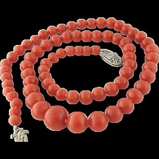 """Vintage Estate 75 Natural Coral Graduated Bead 20"""" Strand Necklace, 14K Gold"""