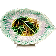 SAVE 20% - Exceptional Etruscan Majolica Begonia Leaf - Pickle Plate 1880's