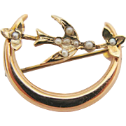 Antique Crescent Moon Bird Brooch 10K Gold Seed Pearl Swallow Pin