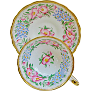 Hammersley Floral Teacup And Saucer Pink Wild Roses Blue Forget Me Nots Vintage Cup 4441