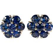 Sapphire Flower Studs 14k Gold Stud Earrings
