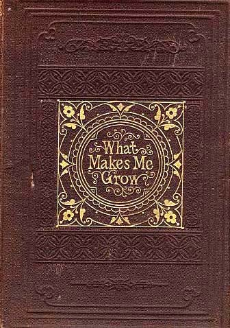 "RARE 1868 1st Ed ""What Makes Me Grow"" 1st Printing - Amy Dudley / Family Life / Antiquarian"