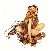 Alan Lee, Brian Froud 'Faeries', 1978 RARE First Edition, First Printing, DJ, Fantasy, Art, Paintings, Watercolors, Mythology, Vintage, Social Science, Mint pages