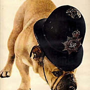1960 'Friskies Dog Food' Carnation Advertisement, Bull Dog, Metropolitan Police Hat, RARE