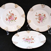 "Vintage (3) Z.S. & Co 7 1/2"" Bavaria Porcelain Salad Plates 1880-1910 Mint Unused Condition"