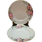 Vintage 2 Noritake Salad Plates Azalea Pattern #19322 Very Good Condition