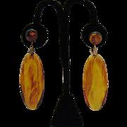 Vintage Tortoise Shell Colored Lucite Dangle Earrings