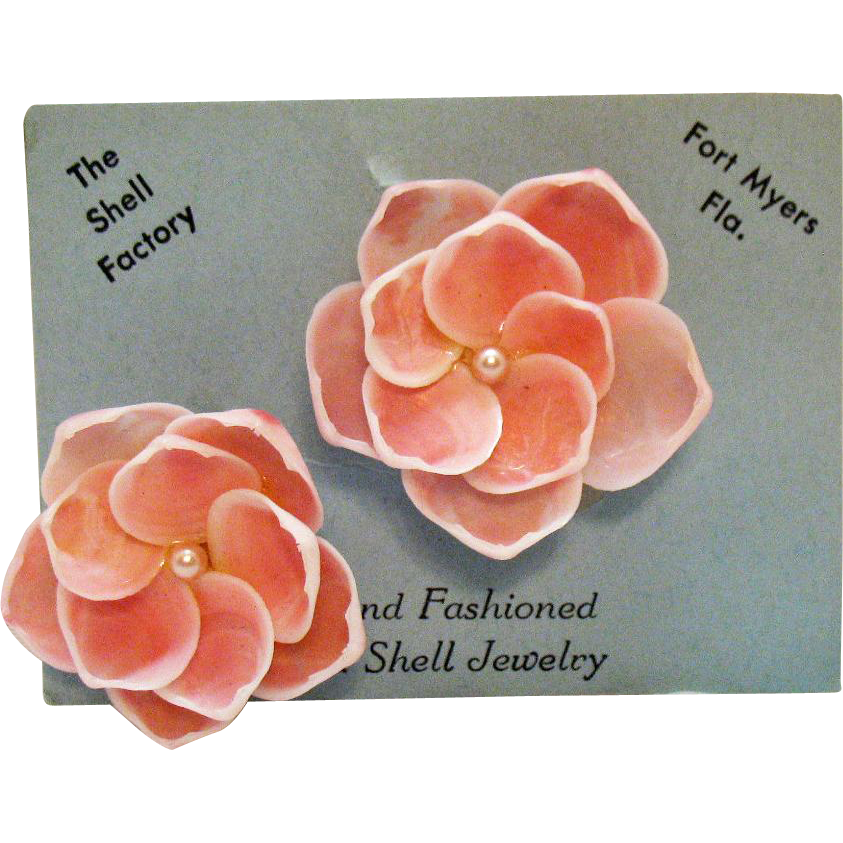Beautiful Vintage Natural Sea Shell Flower Clip Earrings from The Shell Factory Florida