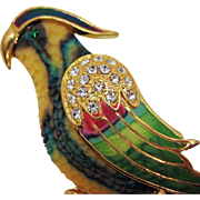 STUNNING Vintage Resin Rhinestone Enameled Parrot Bird Brooch 4 Inches Long