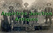 Appletree Junction Antiques logo