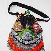 Vintage HIAWATHA Celluloid floral Frame Embroidered Purse