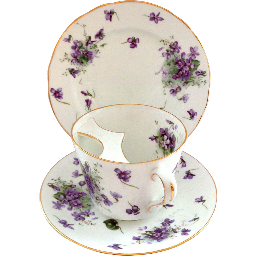 RARE Oversized Mustache Cup with Saucer Hammersley Victorian Violets
