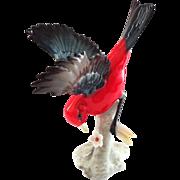 Hutschenreuther Scarlet Tanager Bird Figurine