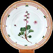 "Outstanding 10"" Royal Copenhagen Flora Danica Dinner Plate Pyrola Grandiflora Rad."
