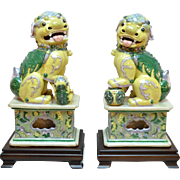 Extraordinary Large Pair of Foo Dogs aka Foo Lions