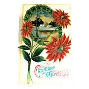 """Christmas Greetings"" Poinsettias & Winter Scene Postcard"